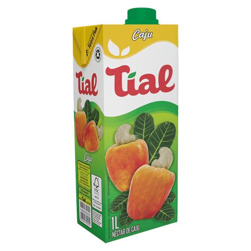 SUCO TIAL CAJU 1L